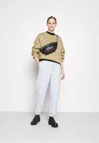 Nike Sportswear - PANT - Spodnie treningowe - pure platinum - 1