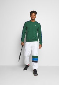Lacoste Sport - RAINBOW TAPING - Sweatshirt - green/silver chine/utramarine/navy blue/white - 1