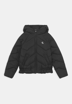 QUILTED PUFFER - Winterjas - black