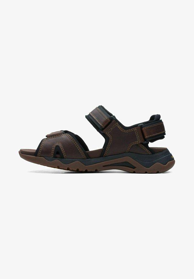 WAVE  JAUNT - Sandales de randonnée - dark tan leather