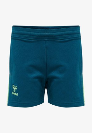 ACTION - Sports shorts - blue coral/green ash