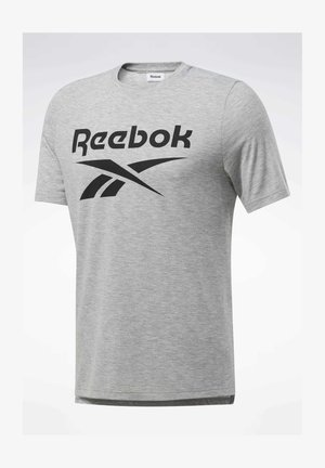 SPEEDWICK SPORT SHORT SLEEVE GRAPHIC TEE - T-shirt med print - grey