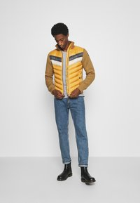 Schott - ROBSON - Light jacket - gold - 1