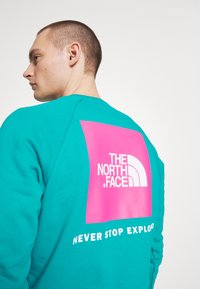 The North Face - RAGLAN BOX CREW - Mikina - jaiden green - 5