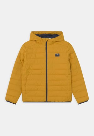 SCALY YOUTH - Winter jacket - nugget gold