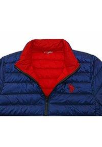 U.S. Polo Assn. - PADDED GEFÜTTERTE  - Winter jacket - dunkelblau - 3