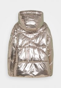 Replay - OUTERWEAR - Winter jacket - dark silver - 1