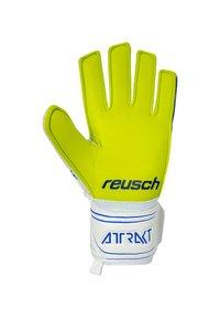 Reusch - Goalkeeping gloves - weissblaugelb - 1