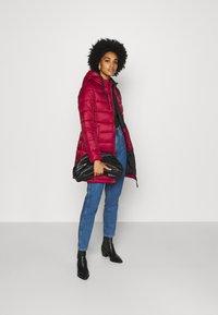Pepe Jeans - LINNA - Winter coat - currant - 1