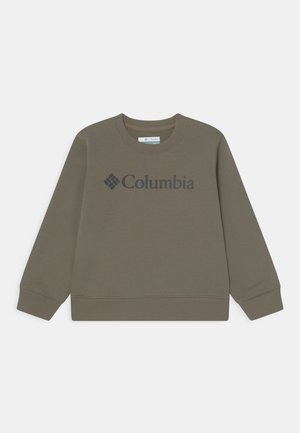 PARK CREW UNISEX - Sweatshirt - stone green