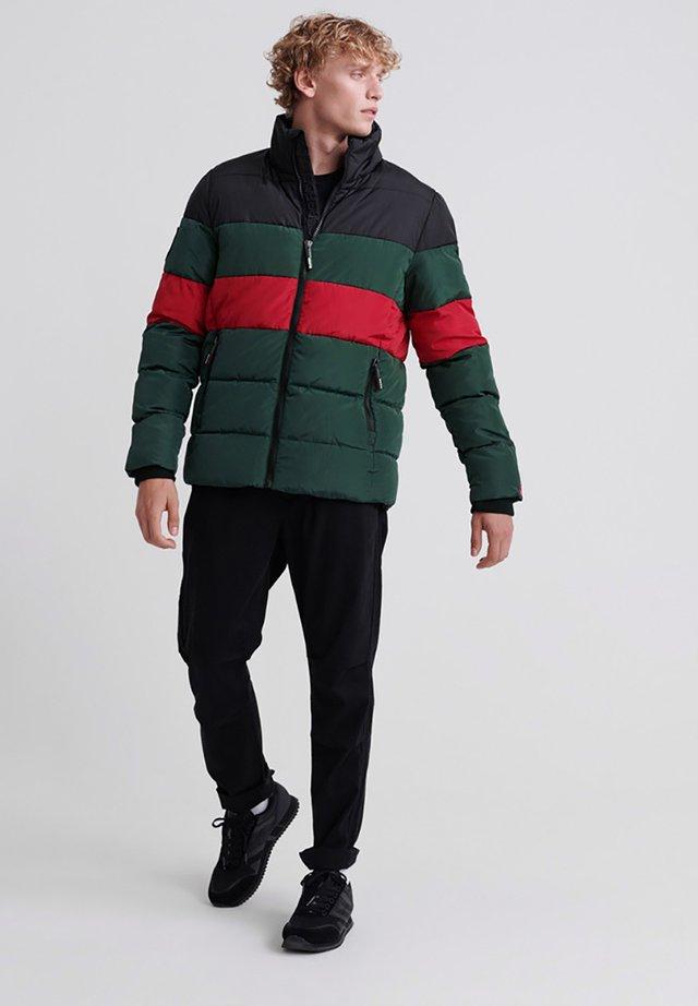 Winter jacket - dark forest