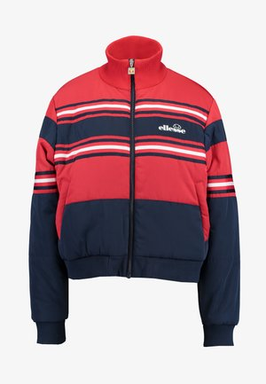 PRESTO - Winter jacket - navy
