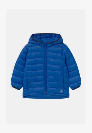 TODDLER BOY PUFFER - Winterjas - admiral blue