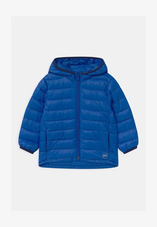 TODDLER BOY PUFFER - Chaqueta de invierno - admiral blue