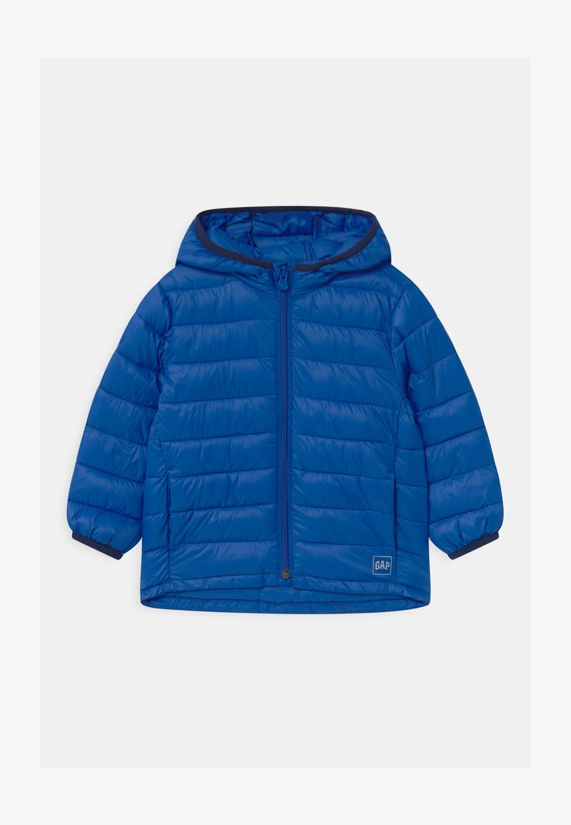 GAP - TODDLER BOY PUFFER - Giacca invernale - admiral blue