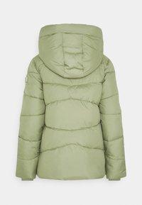TOM TAILOR - Winter jacket - greyish green - 8