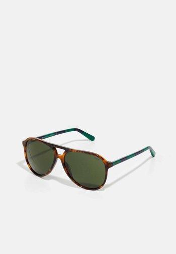 Sunglasses - shiny jerry havana