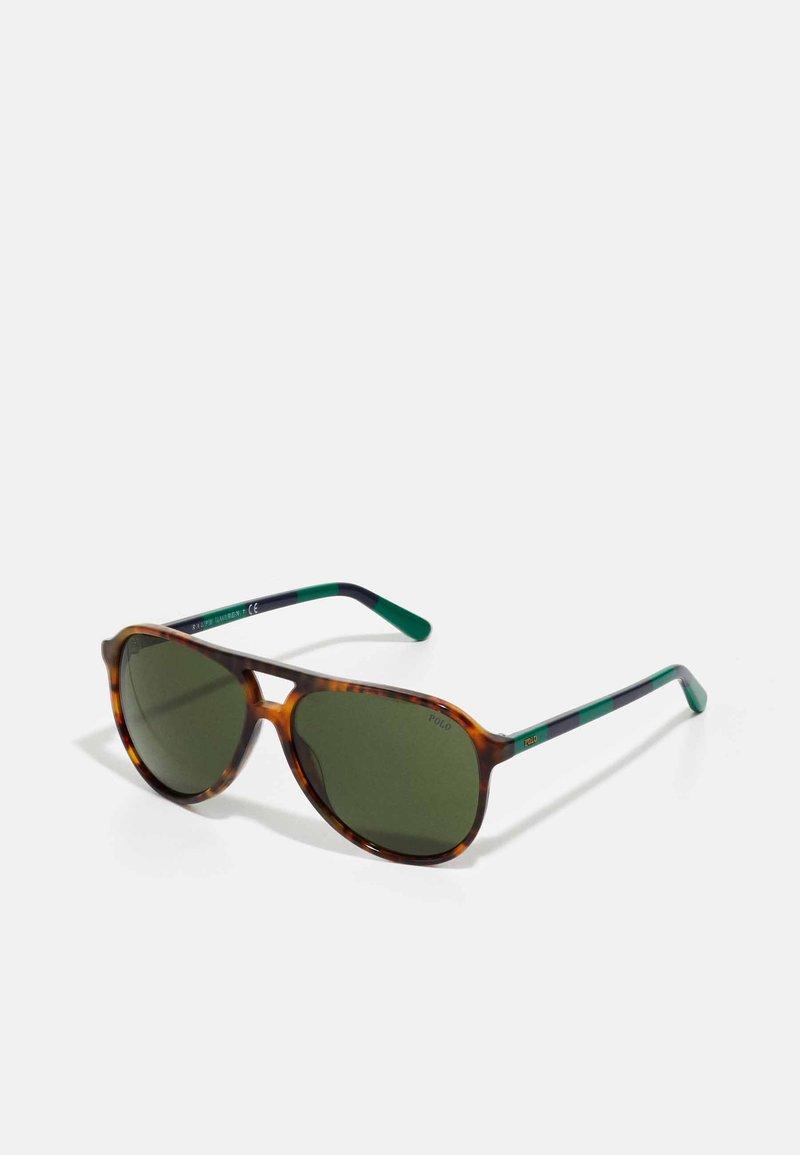 Polo Ralph Lauren - Sunglasses - shiny jerry havana