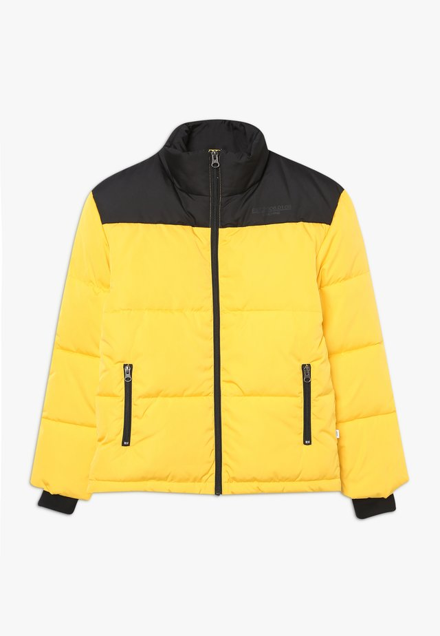 TITAN JACKET - Winter jacket - black/yellow
