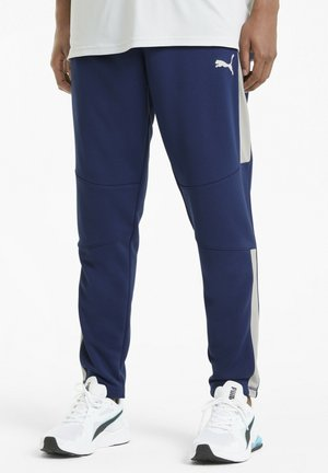 Tracksuit bottoms - elektro blue gray violet