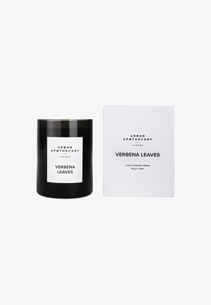 LUXURY BOXED GLASS CANDLE - Świeca zapachowa - verbena leaves