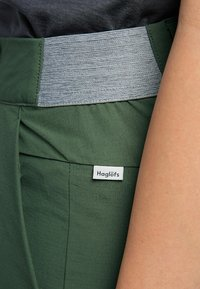 Haglöfs - AMFIBIOUS SHORTS - Outdoor shorts - fjell green - 4