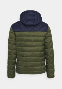 Napapijri - AERONS - Winter jacket - green depths - 7