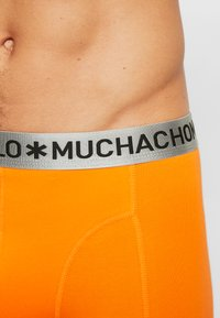MUCHACHOMALO - ZHORS 3 PACK - Pants - orange/black - 4