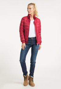 ICEBOUND - Light jacket - rot - 1
