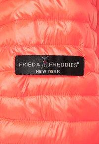 Frieda & Freddies - Short coat - orange - 2
