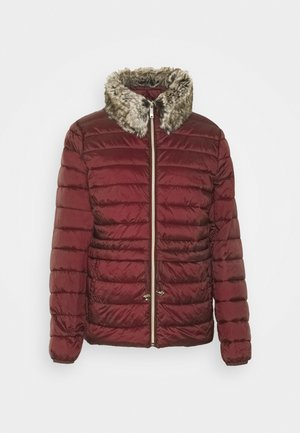 THINSU - Light jacket - bordeaux red