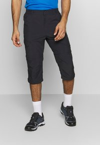 Icepeak - BECKLEY 2-IN-1 - Pantalons outdoor - anthracite - 3