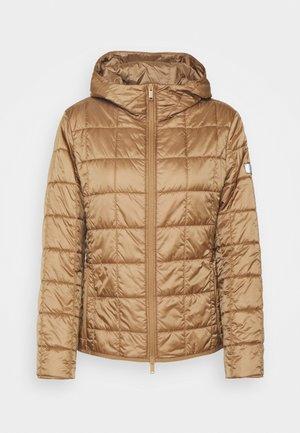 PITTORE - Winter jacket - cammello