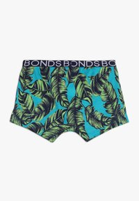 Bonds - TRUNK 3 PACK - Pants - green/multicolor - 1