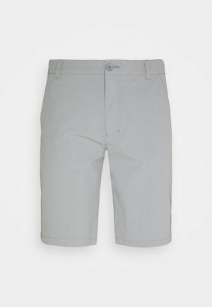 TAKE PRO SHORT - Short de sport - steel grey