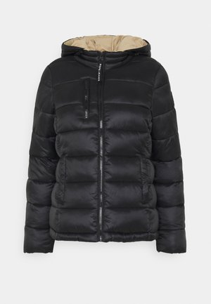 CATA - Winterjacke - black