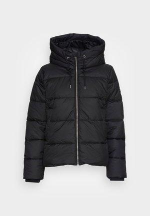 SHORT PUFFER JACKET  - Winter jacket - black