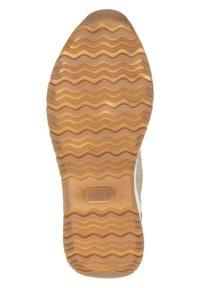 Dolcis - Sneakers laag - goud - 4