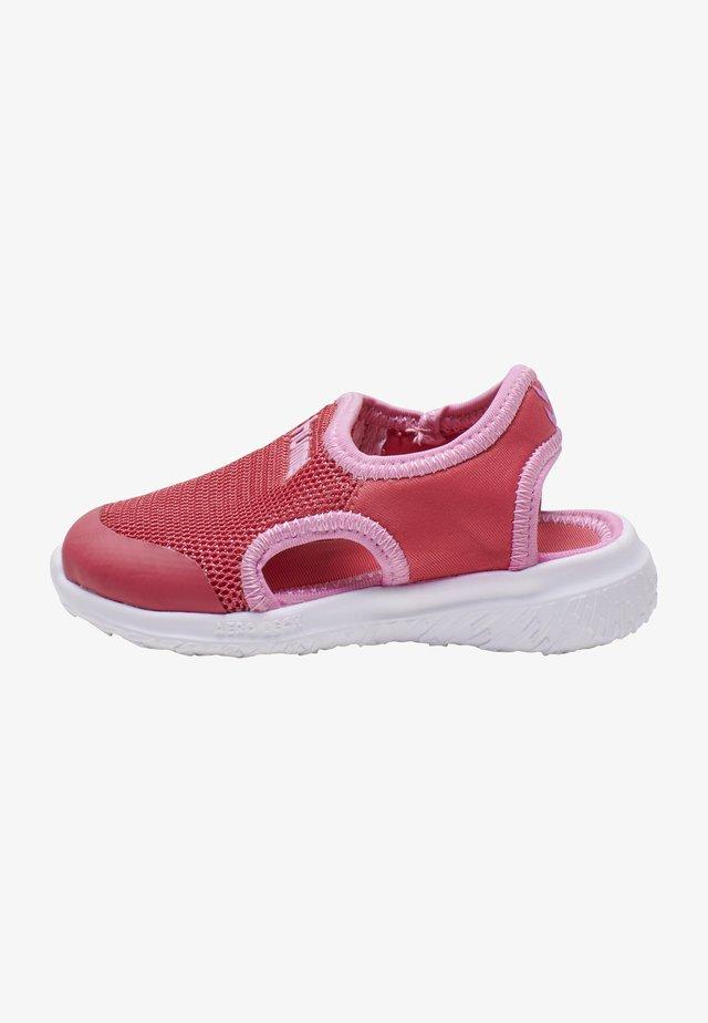 PLAYA ACTUS JR - Sneakersy niskie - claret red