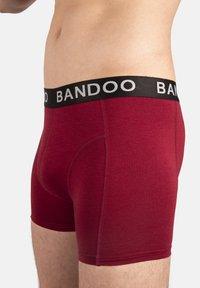 Bandoo Underwear - 2 PACK - Boxer shorts - red, - 4