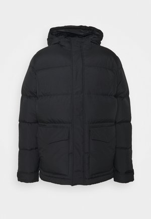 SANDER JACKET - Down jacket - black
