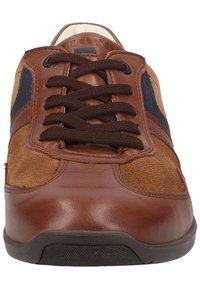 Lloyd - Sneakersy niskie - malt/bluе - 5