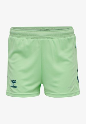 ACTION - Sports shorts - green ash/blue coral
