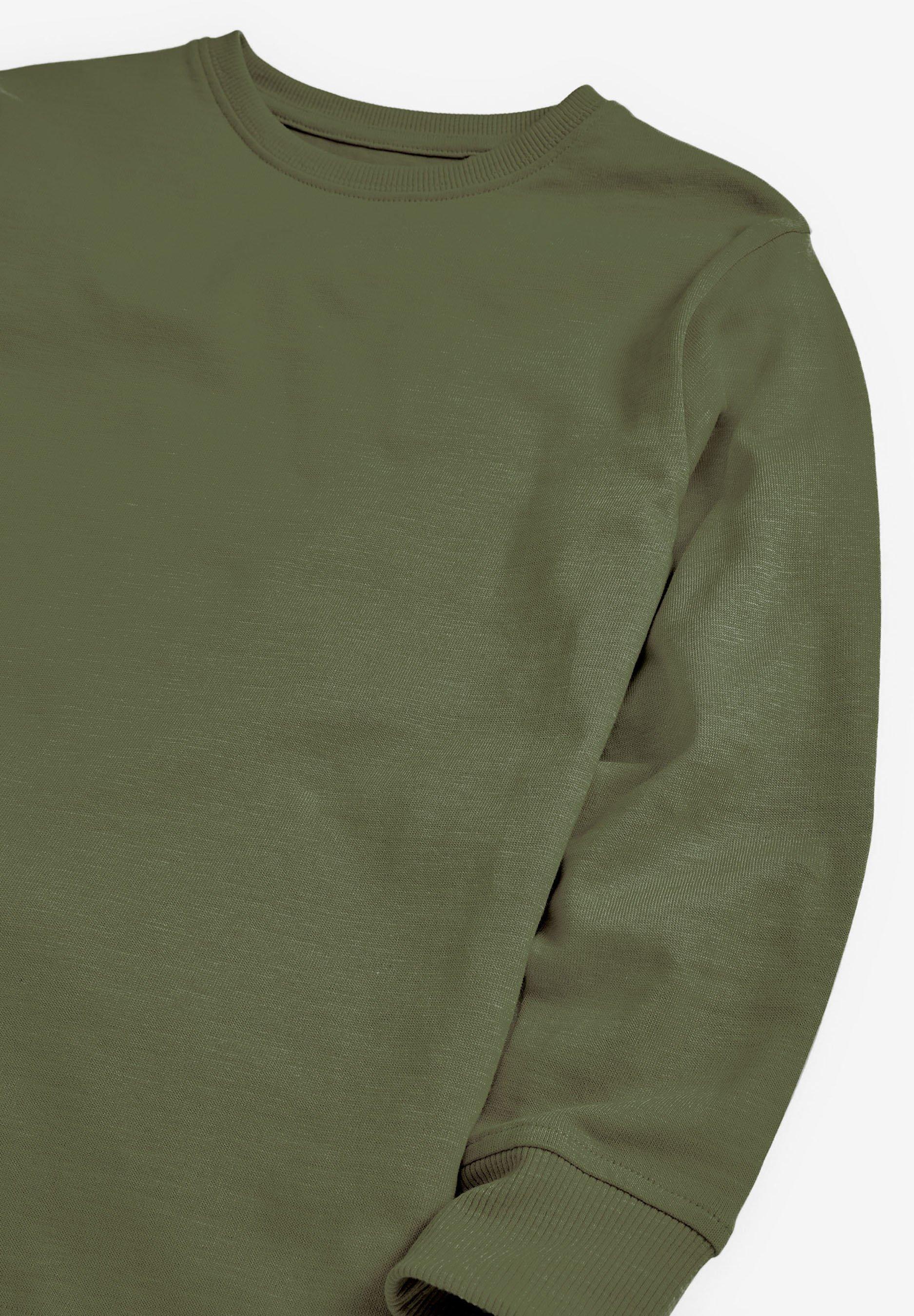 Next Langarmshirt green