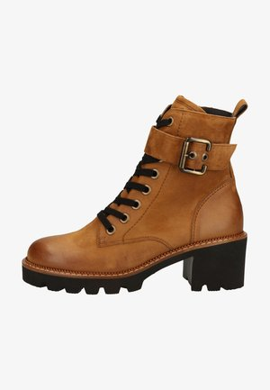 Lace-up ankle boots - cognac-braun 037