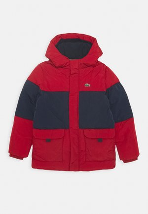 JACKET - Winter jacket - alizarin/navy blue