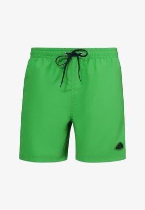 Swimming shorts - lime/azure