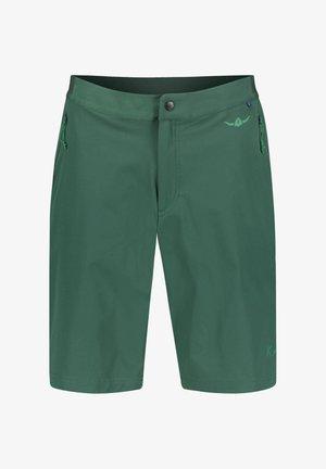 Sports shorts - grün