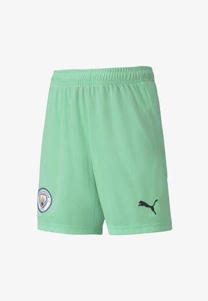 Sports shorts - green glimmer-aqua green