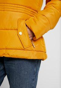 Dorothy Perkins Petite - PADDED JACKET - Zimní bunda - ochre - 5